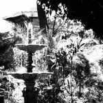 Fountain in Jardin Union