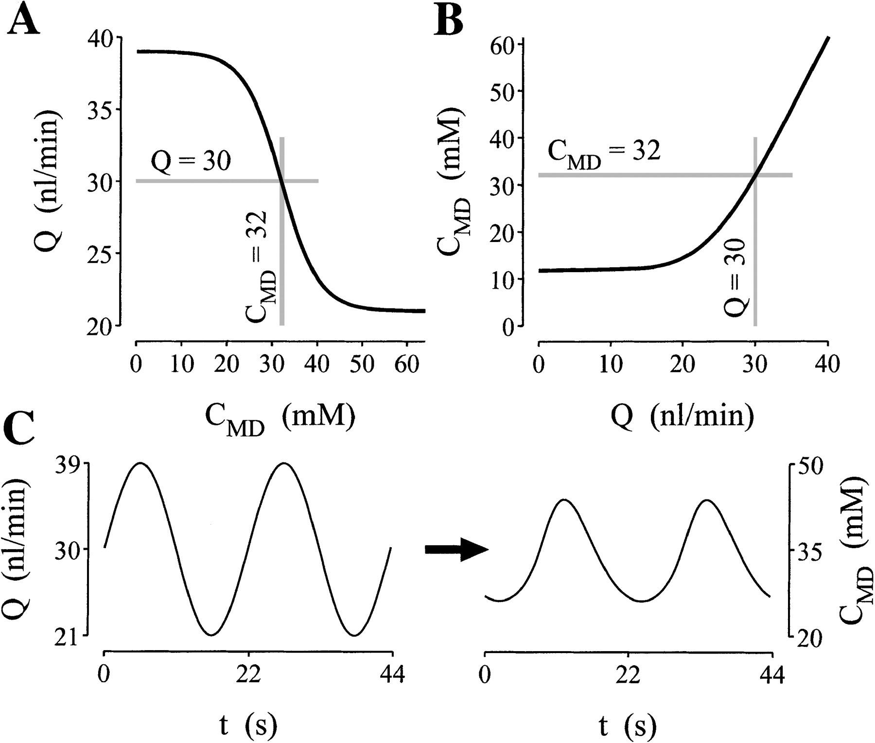 Limit Cycle Oscillations And Tubuloglomerular Feedback