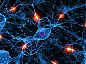 3d rendered illustration of active human nerve cells