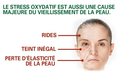 Antioxydant et protection de la peau
