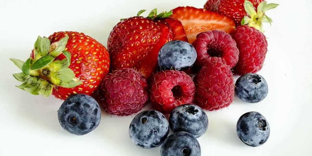 Effets de la consommation de petits fruits sur la santé