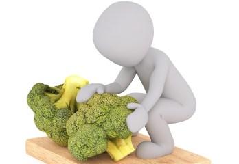 Le brocoli, un crucifère important pour la santé