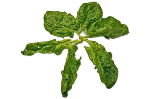 L.épinard est la plis importante source de nitrate qui aide le corps caverneus à donner des érections solides et durables