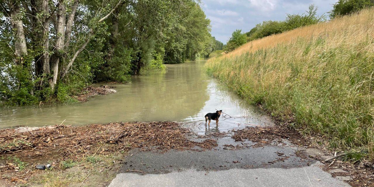 Der Hochwasserdamm