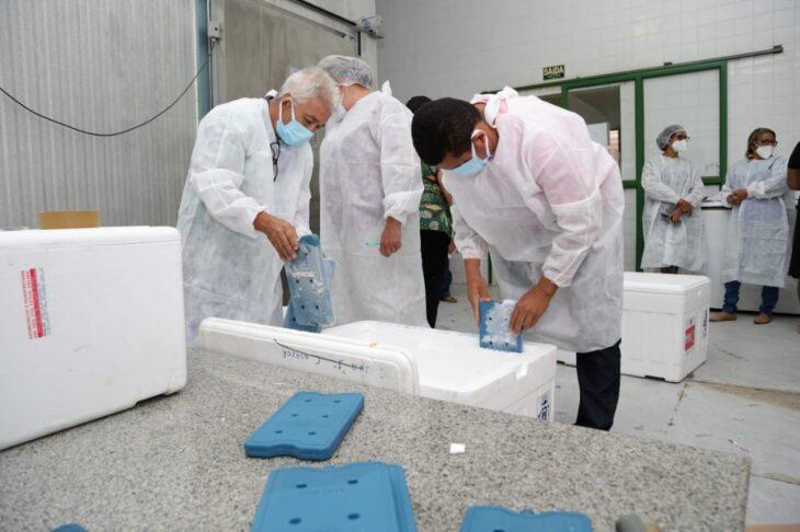 rede de frios coronavac 4 Governo distribuirá vacinas via terrestre e aérea para cidades do interior do Piauí