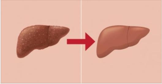 8 alimenti per disintossicare il nostro corpo se li mangiamo tutti i giorni per un mese