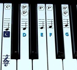 Finefun Autocollants pour touches de piano et clavier Notes de musique pour apprentissage Piano Noir bleu