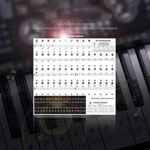 Clavier Autocollant Piano Notation Note De La Musique Clé Autocollant 88 Clé 61 Clé 54 Clé Transparent Piano Clavier Autocollant