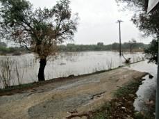 """canale """"Li foggi"""", Alezio. Foto di redazione"""