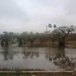 pioggia 7.10.2013 nei pressi provinciale per taviano a casarano