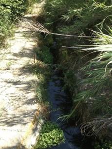Canale dei Samari - a monte del tratto inquinato