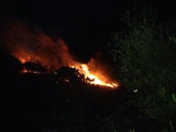 Intervento Protezione civile Ugento - Merine: incendio 1 settembre Madonna del Casale