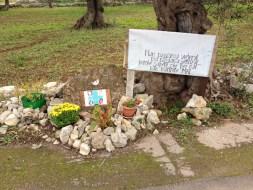 Sp 90 Galatone-Santa Maria al bagno - fiori per i sette morti nell'incidente del 2008