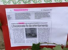 incoronata nardo' (14)