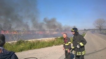 incendio li foggi (12)