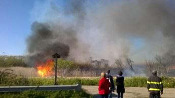 incendio li foggi (16)