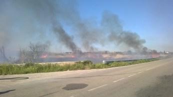 incendio li foggi (8)