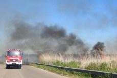 incendio2 (10)