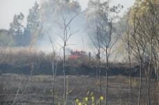 incendio2 (2)
