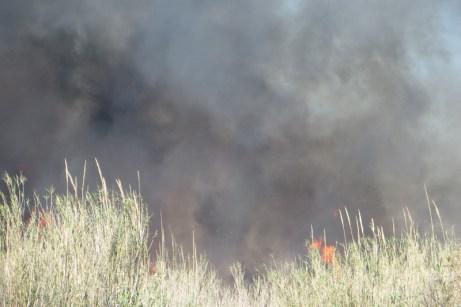 incendio2 (5)