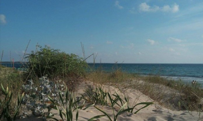 spiaggia-gallipoli
