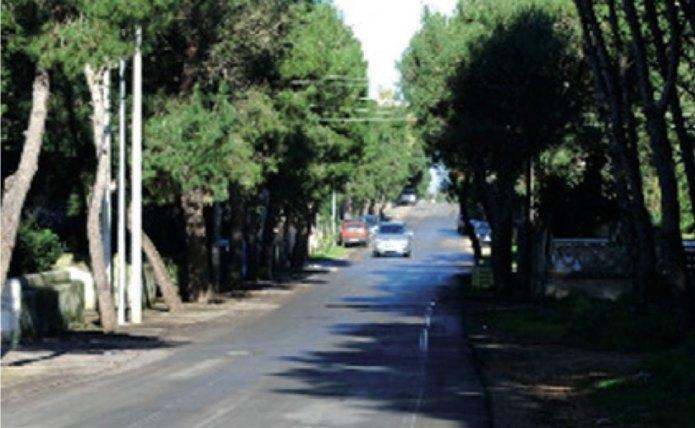 Corso Cesare Vergine