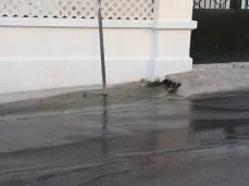 Leuca - scarichi e divieto di balneazione (3)