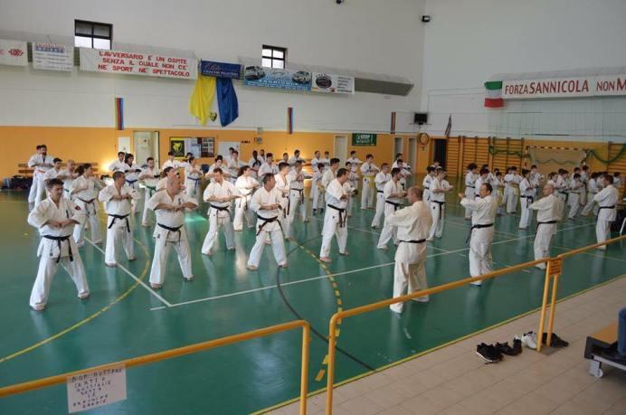 karate stage 2017
