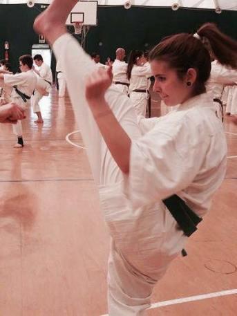 karate2 stage 2017