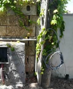 Furto di energia elettrica a Torre San Giovanni
