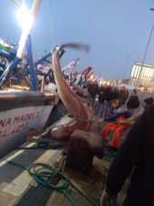 Gallipoli, lo squalo sulla banchina