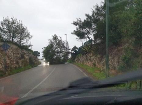 Litoranea Adriatica nei pressi di Leuca