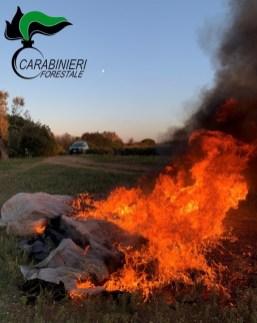 Carabinieri Forestale, incendio Otranto