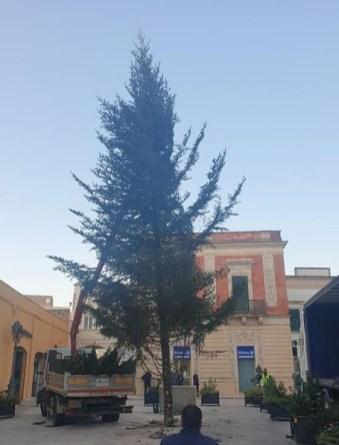 Casarano, l'allestimento dell'albero in piazza Indipendenza