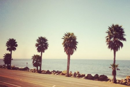 Tumblr Backgrounds Beachhipster Wallpaper Beach California Photography NHriK EgiWall Com Stuff To