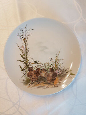 Larch collector plate No. 17 by AK Kaiser, very good condition