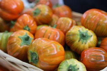 Le melanzane rosse di Rotonda