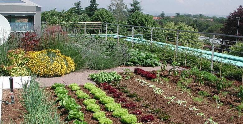 Un Corso Per La Gestione Di Orti E Giardini Alla Ugo