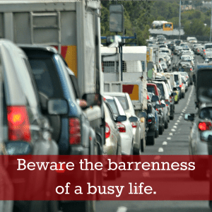Beware the barrenness of a  busy life.