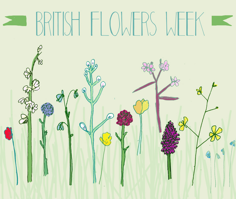 Celebrating British Flowers Week with a Pickle Design illustration