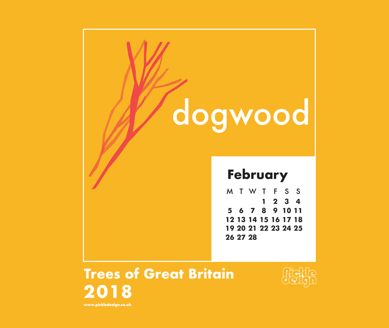Download the Pickle Design February 2018 British Trees calendar featuring illustration of the Dogwood