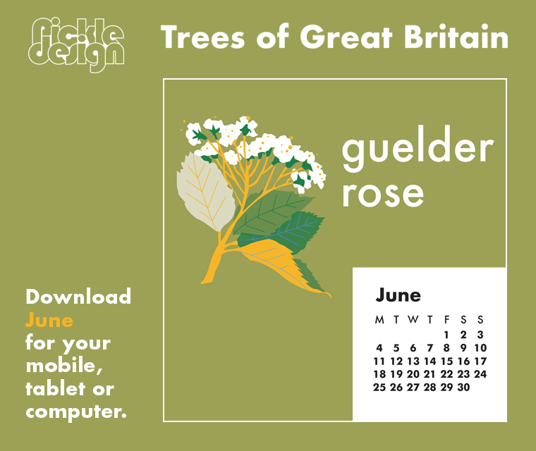 Download the free June retro illustrated calendar of the Guelder Rose one of our Great British trees for your desktop, mobile or tablet