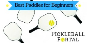 10 Best Pickleball Paddles for Beginners Getting Started in 2021   Paddle Reviews