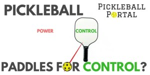Best Pickleball Paddle For Control?   Find Paddles For Finesse