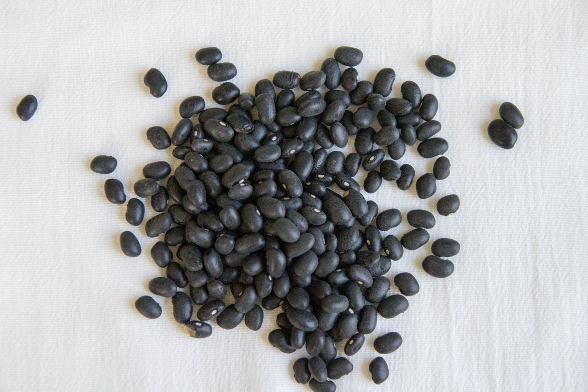 Refried Black Beans-2
