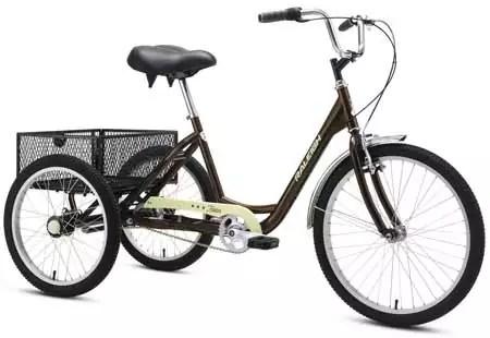 Raleigh Bikes Tristar Best 3-Speed Trike