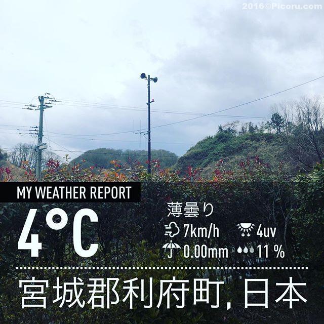 うーむ寒い!雨が降らないだけマシか?#宮城#利府#利府町