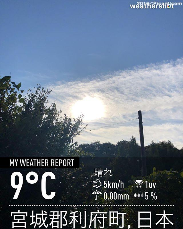 おはようございます!今日はめちゃくちゃ寒い