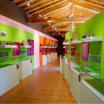museo-de-los-bolos