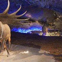 Centro de interpretacion de la fauna glacial Avin